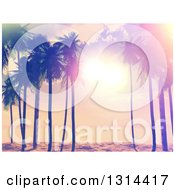 Clipart Of A Retro Lit Tropical Beach Sunset With Palm Trees Painted Style Royalty Free Vector Illustration