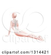Clipart Of A 3d Pink Anatomical Woman Stretching On The Floor In A Yoga Pose With Visible Spine And Skeleton On White Royalty Free Illustration