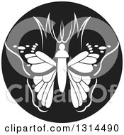 Clipart Of A Black And White Abstract Letter MW Butterfly Round Icon Royalty Free Vector Illustration by Lal Perera