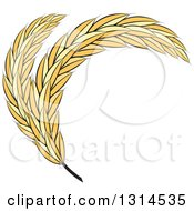 Clipart Of Curved Wheat Stalks Royalty Free Vector Illustration