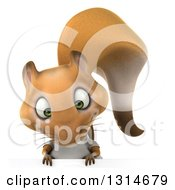 Clipart Of A 3d Casual Squirrel Wearing A White T Shirt Looking Down Over A Sign Royalty Free Illustration by Julos