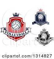 Clipart Of Volleyball Shields With Crowns And Text Banners Royalty Free Vector Illustration