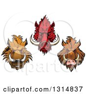 Clipart Of Red And Brown Vicious Razorback Boar Mascot Heads Royalty Free Vector Illustration