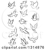 Clipart Of Black And White Flying Dove Birds 2 Royalty Free Vector Illustration