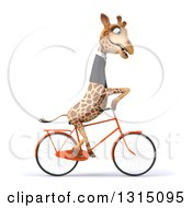 Clipart Of A 3d Business Giraffe Riding A Bike To The Right Royalty Free Illustration