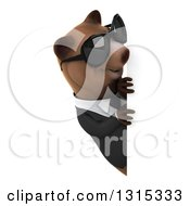 Clipart Of A 3d Happy Brown Business Bear Wearing Sunglasses And Looking Around A Sign Royalty Free Illustration