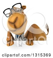 Clipart Of A 3d Bespectacled Doctor Camel Over A Sign Royalty Free Illustration