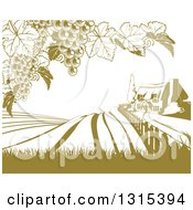 Clipart Of A Vineyard Cottage Farm House And Rolling Hills With Grape Vines In Green And White Royalty Free Vector Illustration