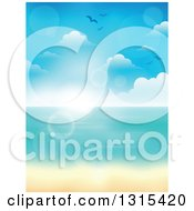 Clipart Of A Blurred Tropical Beach With White Sands And The Horizon Over The Ocean With Seagulls Clouds And Flares Royalty Free Vector Illustration