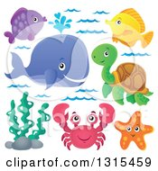 Clipart Of A Cartoon Happy Spouting Whale Fish Sea Turtle Starfish Seaweed And Crab Royalty Free Vector Illustration by visekart