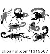 Clipart Of Black Silhouetted Scorpions Royalty Free Vector Illustration