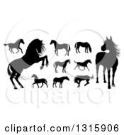 Clipart Of Black Silhouetted Horses Royalty Free Vector Illustration