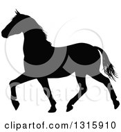 Clipart Of A Black Silhouetted Horse Prancing Royalty Free Vector Illustration