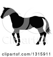 Clipart Of A Black Silhouetted Horse Walking Royalty Free Vector Illustration by AtStockIllustration