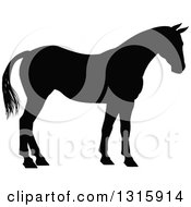 Clipart Of A Black Silhouetted Horse Facing Right Royalty Free Vector Illustration by AtStockIllustration