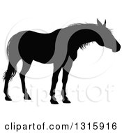 Clipart Of A Black Silhouetted Horse 2 Royalty Free Vector Illustration by AtStockIllustration