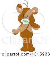 Cartoon Cute Teddy Bear Brushing His Teeth