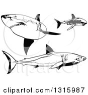 Clipart Of Black And White Swimming Great White Sharks Royalty Free Vector Illustration by dero