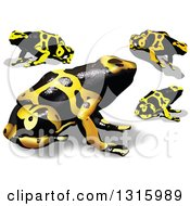 Clipart Of 3d Yellow And Black Poison Dart Frogs With Shadows Royalty Free Vector Illustration by dero