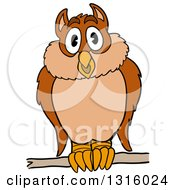 Cartoon Hooting Owl Perched On A Branch