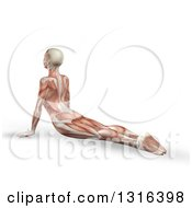 Clipart Of A 3d Anatomical Woman Stretching On The Floor In A Yoga Pose With Visible Muscle Map On White Royalty Free Illustration