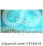 Clipart Of A 3d Underwater Scene With Schooling Tropical Fish And Pebbles Royalty Free Illustration