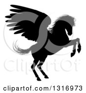 Clipart Of A Black Silhouetted Rearing Winged Pegasus Horse Royalty Free Vector Illustration by AtStockIllustration