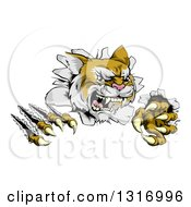 Clipart Of A Vicious Wild Cat Slashing Through A Wall Royalty Free Vector Illustration