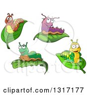 Clipart Of Cartoon Caterpillars On Leaves Royalty Free Vector Illustration