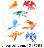 Clipart Of Origami Paper Parrots 5 Royalty Free Vector Illustration