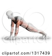 Clipart Of A 3d Anatomical Man In A Push Up Or Yoga Pose With Visible Muscle Map On White Royalty Free Illustration by KJ Pargeter
