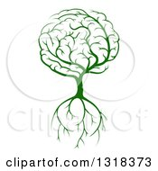 Clipart Of A Green Brain Tree With A Roots Royalty Free Vector Illustration