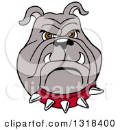 Clipart Of A Cartoon Angry Bulldog Face With A Red Spiked Collar Royalty Free Vector Illustration