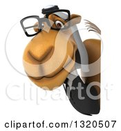 Clipart Of A 3d Besepectacled Arabian Business Camel Looking Around A Sign Royalty Free Illustration