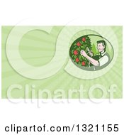 Clipart Of A Retro Woodcut Farmer Pruning Apple Trees In An Orchard And Green Rays Background Or Business Card Design Royalty Free Illustration