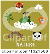 Flat Design Asian Animals And Items With Text On Green