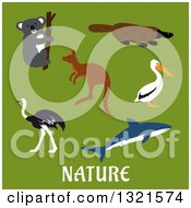 Clipart Of A Flat Design Koala Platypus Pelican Shark Kangaroo And Ostrich Over Nature Text On Green Royalty Free Vector Illustration
