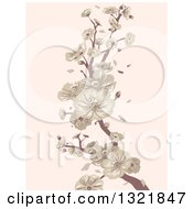 Clipart Of A Vintage Cherry Blossom Branch On Pastel Pink Royalty Free Vector Illustration by BNP Design Studio