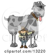 Cowboy Walking A Giant Great Dane Dog On A Leash Clipart Illustration