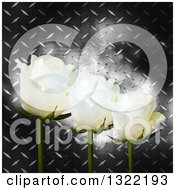 Clipart Of 3d White Roses Over Glowing Flares And Diamond Plate Metal Royalty Free Vector Illustration