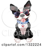 Cute American Patriotic Boston Terrier Dog Sitting And Wearing Sunglasses And A Collar