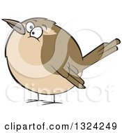 Clipart Of A Cartoon Chubby Wren Bird Royalty Free Vector Illustration by toonaday