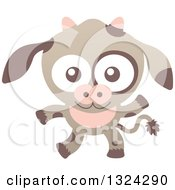 Clipart Of A Cartoon Baby Cow Royalty Free Vector Illustration by Zooco