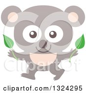 Cartoon Baby Koala Holding Leaves