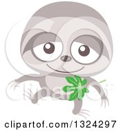 Clipart Of A Cartoon Baby Sloth Royalty Free Vector Illustration
