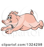 Clipart Of A Cartoon Scared Pig Running Royalty Free Vector Illustration by LaffToon