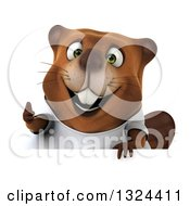 Clipart Of A 3d Happy Casual Beaver Wearing A T Shirt And Giving A Thumb Up Over A Sign Royalty Free Illustration