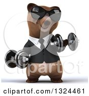 Clipart Of A 3d Happy Brown Business Bear Wearing Sunglasses Working Out Doing Bicep Curls With Dumbbells Royalty Free Illustration