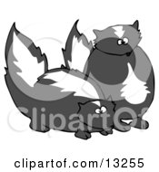 Pair Of Mischievous Skunks Clipart Illustration