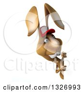 Clipart Of A 3d Brown Bunny Rabbit Wearing A Baseball Cap And Looking Around A Sign Royalty Free Illustration by Julos